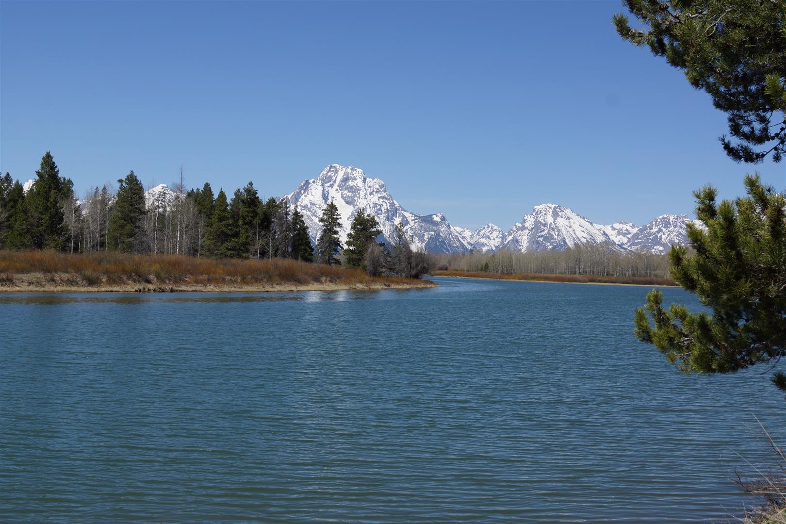 Der Teton Nationalpark bot uns dann aber schon ein paar schöne Anblicke.