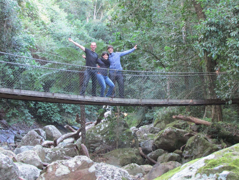 ... über wackelige Hängebrücken ...